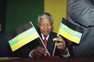 Nelson Mandela by Denis Paquin