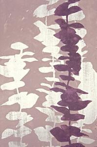 Eucalyptus, Roseberry by Denise Duplock