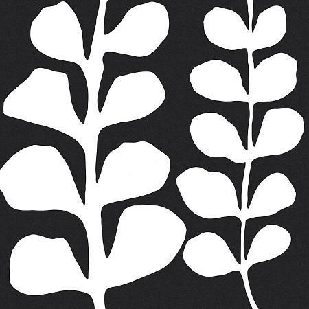 denise-duplock-maidenhair-white-on-black