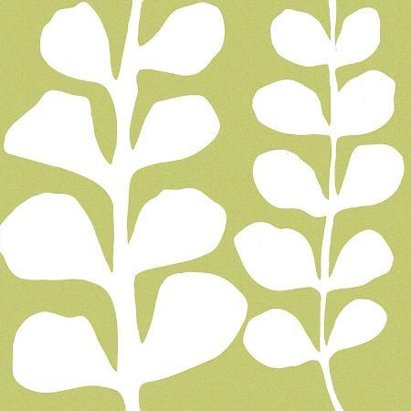 denise-duplock-white-fern-on-green