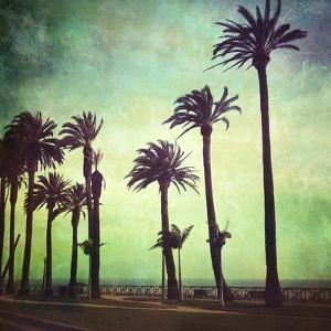 Palisades Park by Denise Taylor