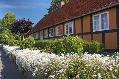 Denmark, Funen, Horne, House Facade, Wall, Flowers-Chris Seba-Photographic Print
