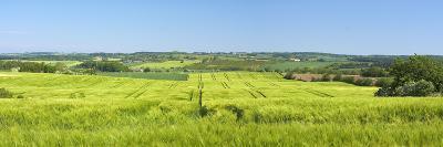 Denmark, Funen, Wheat Fields, Near Horne-Chris Seba-Photographic Print