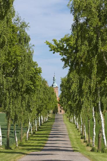 Denmark, Jutland, Avenue of Birches, Country House-Chris Seba-Photographic Print