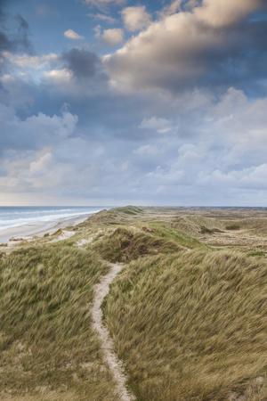 Denmark, Jutland, Danish Riviera, Hvide Sande, Coastal Dunes, Dusk-Walter Bibikow-Photographic Print
