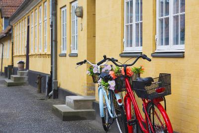 Denmark, Zealand, Soro, Traditional Danish Houses, Sogade Street-Walter Bibikow-Photographic Print