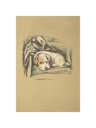 https://imgc.artprintimages.com/img/print/denna-sealyham-terrier_u-l-f95rvr0.jpg?p=0
