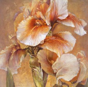 Golden Iris by Dennis Carney