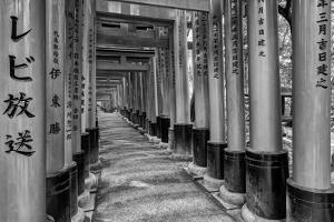 Asia, Japan, Kyoto. Torii Gates at Fushimi Inari-Taisha Shrine by Dennis Flaherty
