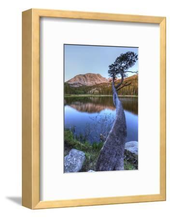 California, Sierra Nevada Mountains. Calm Reflections in Grass Lake
