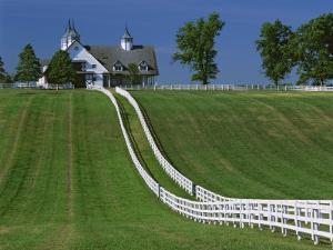 Double White Fence Flows from an Elegant Horse Barn, Woodford County, Kentucky, USA by Dennis Flaherty