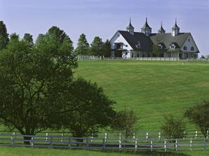 Elegant Horse Barn Atop Hill, Woodford County, Kentucky, USA by Dennis Flaherty