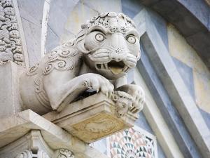 Gargoyle of Duomo Pisa, Pisa, Italy by Dennis Flaherty