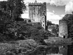 Ireland, Blarney. View of Blarney Castle by Dennis Flaherty
