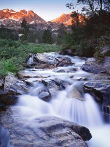 Stream Runs Through Lamoille Canyon in the Ruby Mountains, Nevada, Usa by Dennis Flaherty
