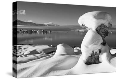 USA, California, Mono Lake. Snow-Covered Tufa