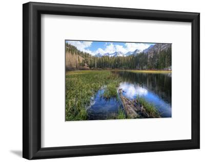 USA, California, Sierra Nevada Range. Landscape with Weir Pond