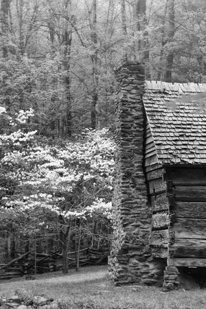 USA, Tennessee, Great Smoky Mountains National Park. Abandoned Cabin