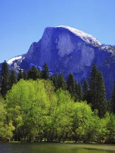 View of Half Dome Rock and Merced River, Yosemite National Park, California, Usa by Dennis Flaherty