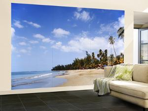 View of Luquillo Beach, Puerto Rico, Caribbean by Dennis Flaherty