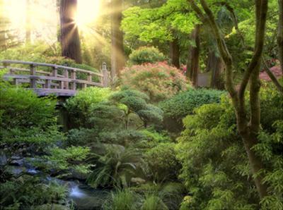 Awakening Garden I