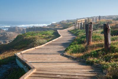 Boardwalk by Dennis Frates
