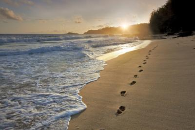 Footprints by Dennis Frates