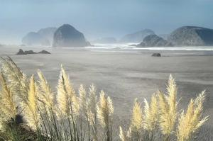 Pampas Beach by Dennis Frates