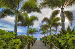 Paradise Path by Dennis Frates