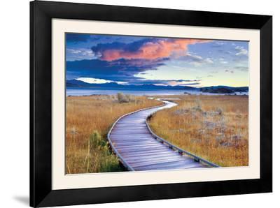 Pathway to Mono Lake