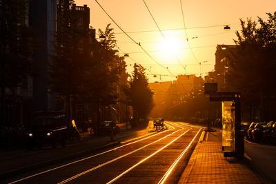 Beautiful Urban Sunrise in the City of Amsterdam, the Netherlands, at the Tram Stop