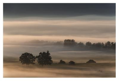 Dense Fog Over The Moos-Nina Pauli-Giclee Print