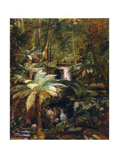 Dense Jungle in New Guinea-Charles E Gordon Frazer-Giclee Print