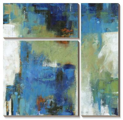 Density I-Tim O'toole-Canvas Art Set