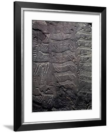 Depiction of Deer, Petroglyphs in Val Camonica--Framed Photographic Print