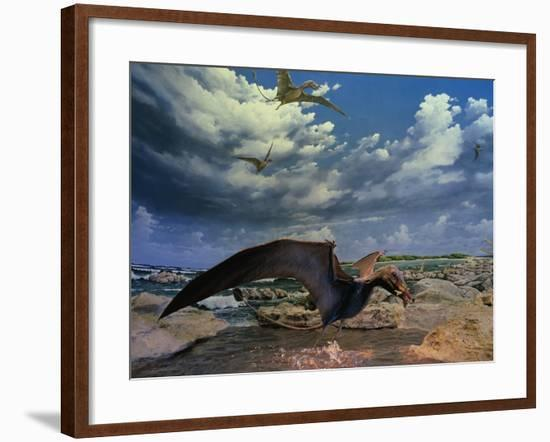 Depiction of Eudimorphon at Museum-Jonathan Blair-Framed Photographic Print