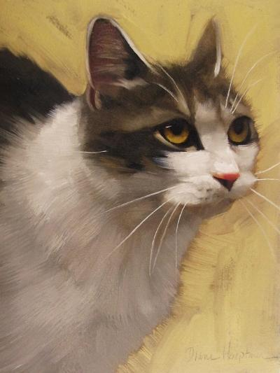 Derby Cat-Diane Hoeptner-Art Print