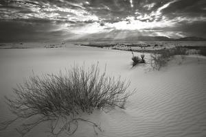 Dunes with Snow in White Sands National Monument by Derek Von Briesen