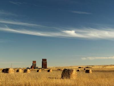 Derelict Grain Elevators Stand in the Prairies-Pete Ryan-Photographic Print