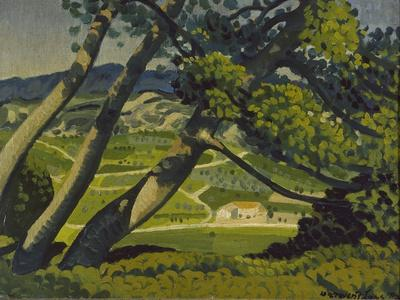 Trees, Provence, 1912