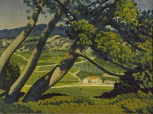 Trees, Provence, 1912 by Derwent Lees
