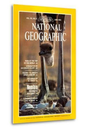 Cover of the June, 1982 National Geographic Magazine