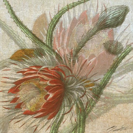 Desert Botanicals II-John Butler-Art Print