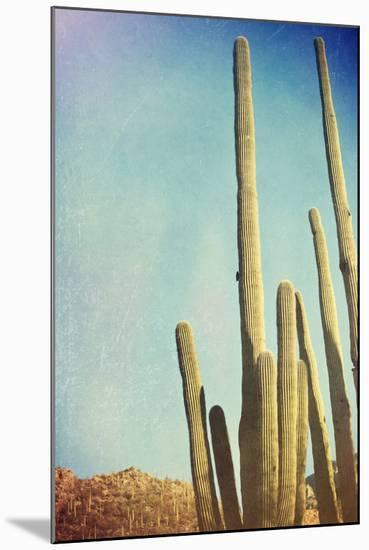 Desert Cactus With An Artistic Texture Overlay-pdb1-Mounted Premium Giclee Print