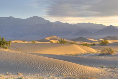 https://imgc.artprintimages.com/img/print/desert-dawn_u-l-q10ckpc0.jpg?p=0