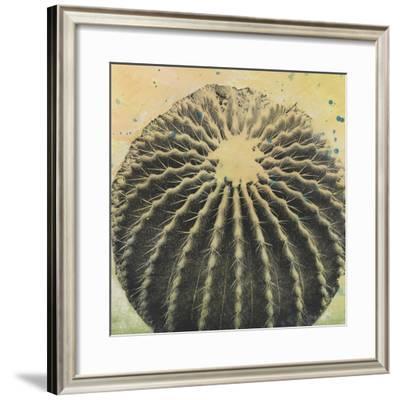 Desert Dreams III-Naomi McCavitt-Framed Giclee Print