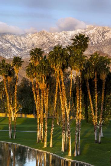 Desert Island Golf and Country Club, Palm Springs, California, USA-Richard Duval-Photographic Print