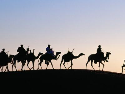 https://imgc.artprintimages.com/img/print/desert-just-outside-timbuktu-tuareg-camels-at-sunset_u-l-pd73uh0.jpg?p=0