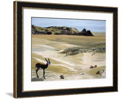 Desert Landscape and Fauna, Drawing--Framed Giclee Print