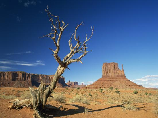 Desert Landscape with Rock Formations and Cliffs in the Background, Monument Valley, Arizona, USA--Photographic Print